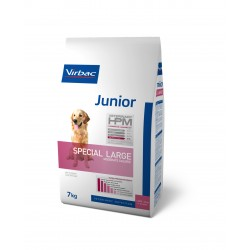 HPM Junior Special Large